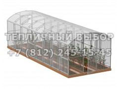 Теплица Весна-8 2Д стандарт Оц100 ПК-5 [ФМ3880]
