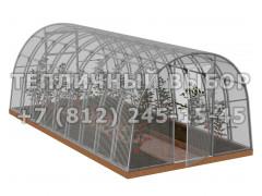 Теплица Агроном-6 2Д стандарт Оц65 ПК-4 [ФМ3867]
