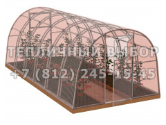 Теплица Агроном-6 2Д стандарт Оц100 ПК-4 НАНО [ФМ3859]