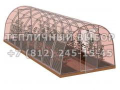 Теплица Агроном-8 2Д стандарт Оц100 ПК-5 НАНО [ФМ3860]