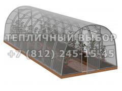 Теплица Агроном-8 2Д стандарт Оц100 ПК-5 [ФМ3856]