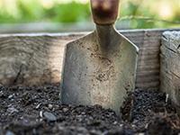 Обработка почвы осенью