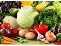 Основные болезни овощей при хранении и методы борьбы с ними