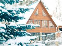 Что можно посадить под зиму